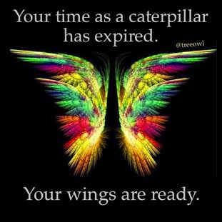 your wings are ready.jpg